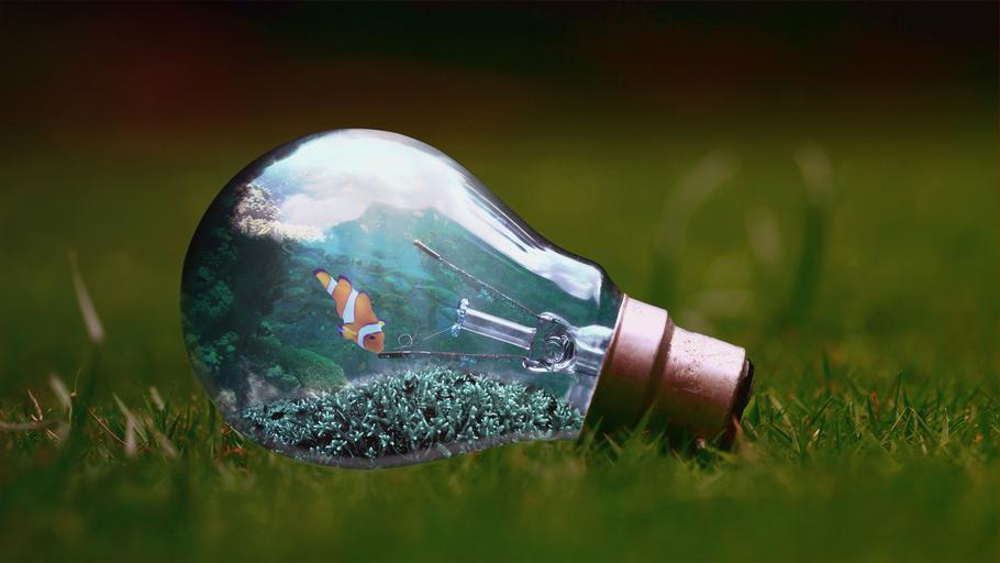 Žiarovka na zelenej tráve, ekologická
